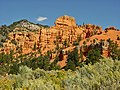 Dixie National Forest, Red Canyon - panoramio.jpg