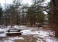 Djurgarden Lilljan 1.jpg