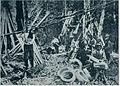 Domači obrti na Kranjskem - obodarji 1903.jpg