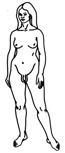 Drawing of trans woman.png
