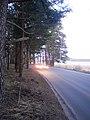 Druvchiks - panoramio.jpg