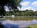 Dunabogdányi Dunapart.jpg