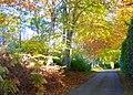 Dunrobin Castle driveway - geograph.org.uk - 1030916.jpg