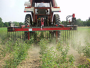 Weed control - A mechanical weed control device: the diagonal weeder