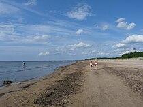 EU-EE-IV-Narva-Jõesuu-Narva-Jõesuu beach.JPG