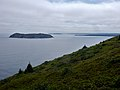 East Coast Trail (29101244997).jpg