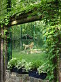 Eberswalde Zoo Lowen.jpg