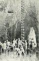 Edelsteinkunde; eine allgemein verständliche Darstellung der Eigenschaften, des Vorkommens und der Verwendung der Edelsteine, nebst einer Anleitung zur Bestimmung derselben, für Mineralogen, (20974480159).jpg