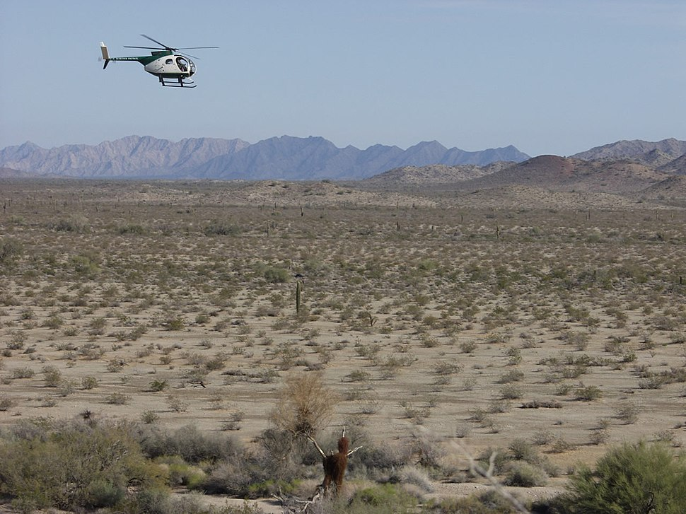 El Camino del Diablo, border patrol