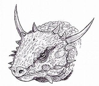 Elginia - Reconstruction of the head of E. mirabilis