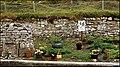 Elgol School, Isle of Skye, Scotland - geograph.org.uk - 1531644.jpg