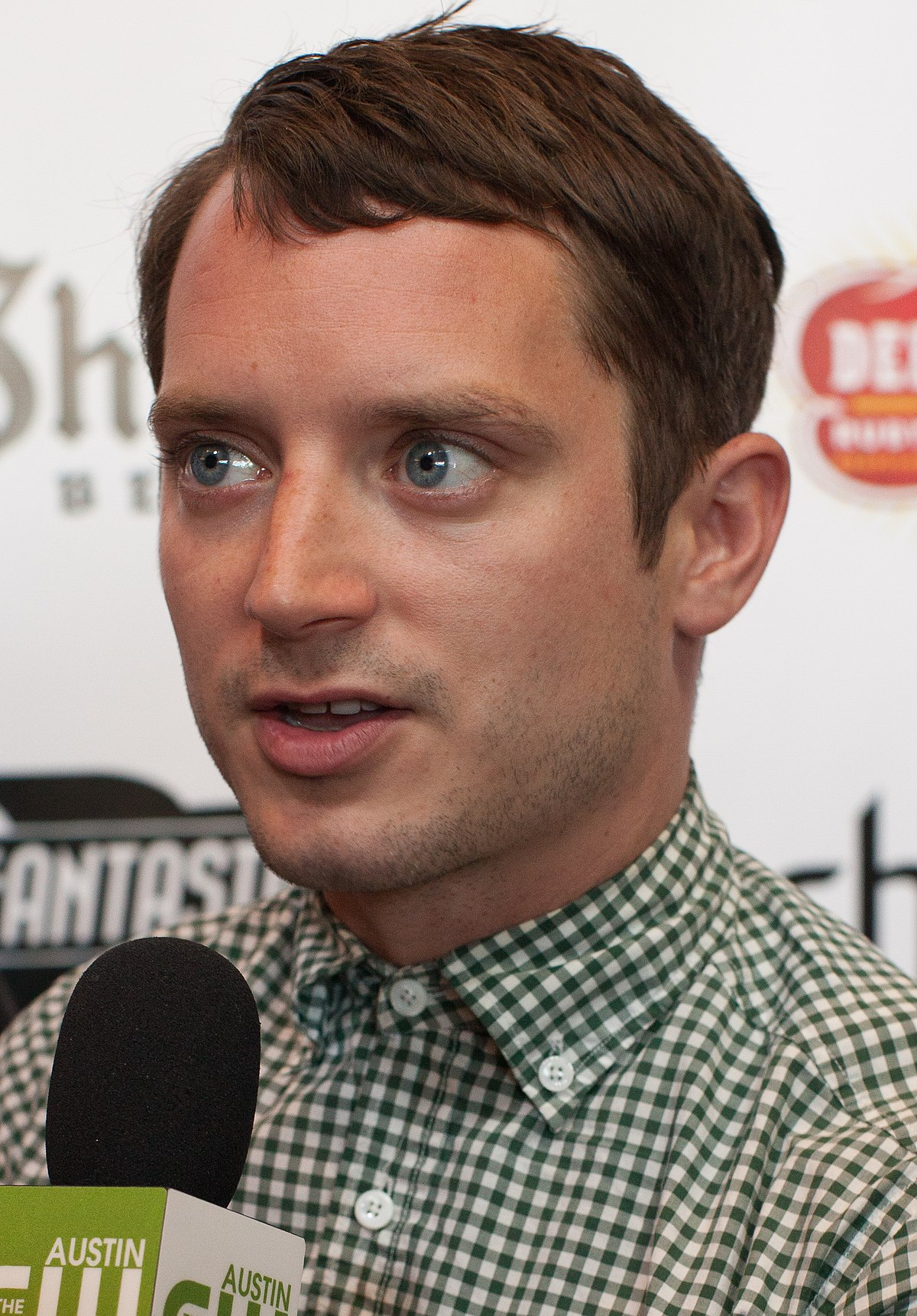 Elijah wood wikip dia for Elijah wood tattoo