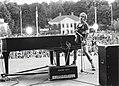 Elton John on stage.jpg
