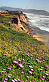 Erosion and spring in Pacifica.jpg