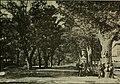 España, sus monumentos y artes, su naturaleza e historia (1884) (14792801023).jpg