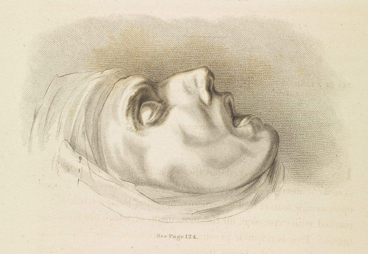 File:Essays on the anatomy of expression in painting Wellcome ...