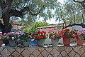 Exo Chora 290 91, Greece - panoramio.jpg