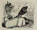 Fábulas de Samaniego (1882) (page 89 crop).jpg