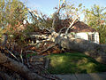 FEMA - 16885 - Photograph by Nicolas Britto taken on 10-08-2005 in Mississippi.jpg