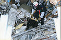 FEMA - 3860 - Photograph by Roman Bas taken on 11-22-1996 in Puerto Rico.jpg