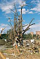 FEMA - 5127 - Photograph by Jocelyn Augustino taken on 09-25-2001 in Maryland.jpg