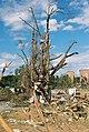 FEMA - 5127 - Photograph by Jocelyn Augustino taken on 09-25-2001 in Maryland.jpg