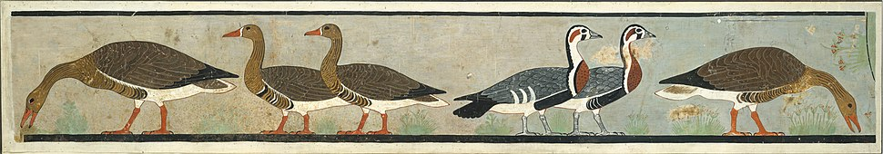 Facsimile Painting of Geese, Tomb of Nefermaat and Itet MET DT226227