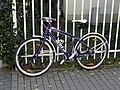Fahrrad auf der Wittenberger Straße, Dresden (1208).jpg