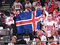 Fans of Norway.JPG