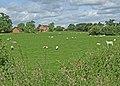 Farmland at Blaken Knob - geograph.org.uk - 848662.jpg