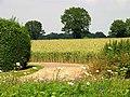 Farmland at Woodlands St Mary - geograph.org.uk - 25879.jpg