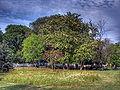 Fenerbahce Park 05369.jpg