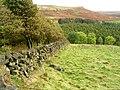 Field Walls - geograph.org.uk - 192437.jpg
