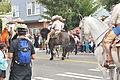 Fiestas Patrias Parade, South Park, Seattle, 2015 - 279 - the horses (21583680142).jpg