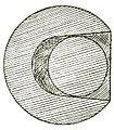 Fig. 26 Magic Stanyon.jpg