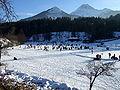 Finkenstein Unteraichwald Aichwaldsee im Winter 04012009 06.jpg