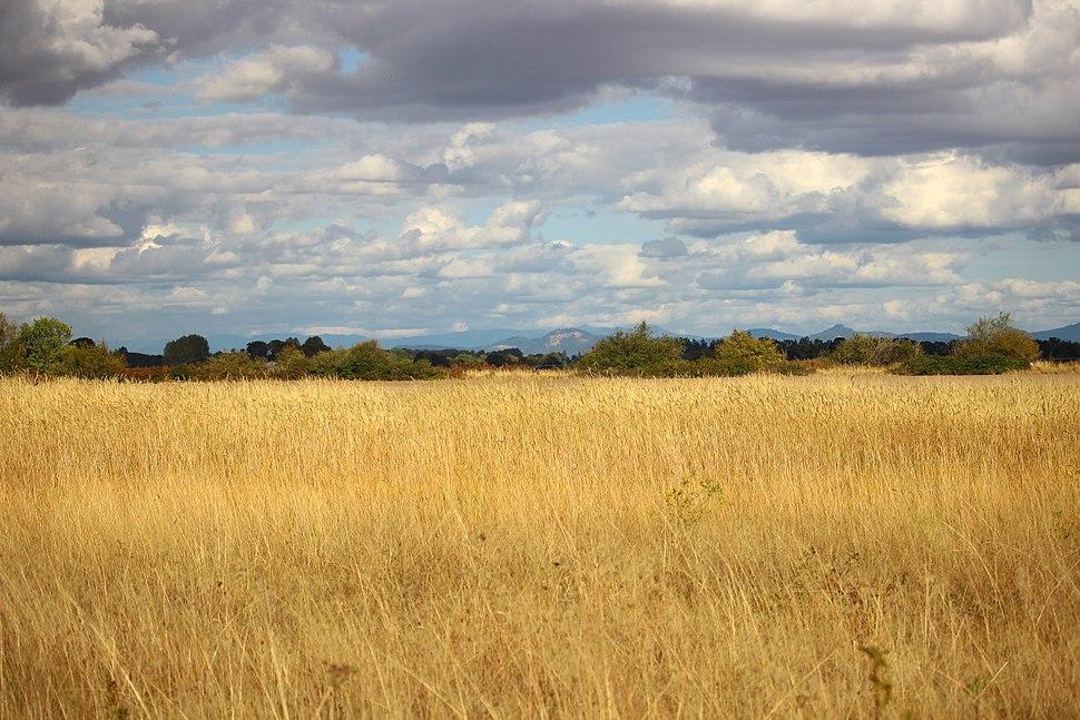 Finley wildlife refuge