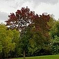 Finsbury Park 20171002 153530 (49369540468).jpg
