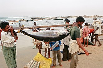 Carrying pole - Image: Fishermen at Visakhapatnam beach