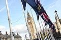 Flags of the Overseas Territories (8138384199).jpg