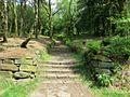 Flight of steps in the Chinese Gardens, Rivington-geograph-3984546-by-Phil-Platt.jpg