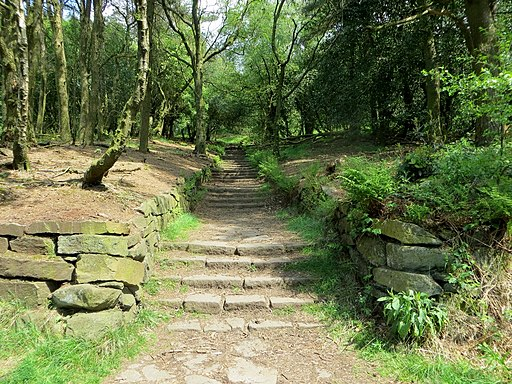 Flight of steps in the Chinese Gardens, Rivington-geograph-3984546-by-Phil-Platt