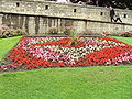 Flowerbed by the city walls, Station Road, York - DSC07865.JPG