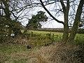 Footbridge over the Mad Brook - geograph.org.uk - 1722269.jpg