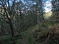 Footpath along Ceunant Cynfal - geograph.org.uk - 64860.jpg