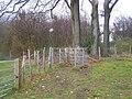 Footpath junction at Cowstead Wood - geograph.org.uk - 1065610.jpg