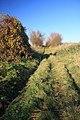 Footpath to Cropley Grove - geograph.org.uk - 1058720.jpg