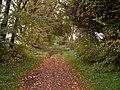 Footpath to Kintessack from near Moy House - geograph.org.uk - 264613.jpg