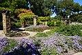 Fort Worth Botanic Garden October 2019 19 (Republic of Texas Rose Garden).jpg