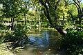 Fort Worth Botanic Garden October 2019 24 (pond).jpg